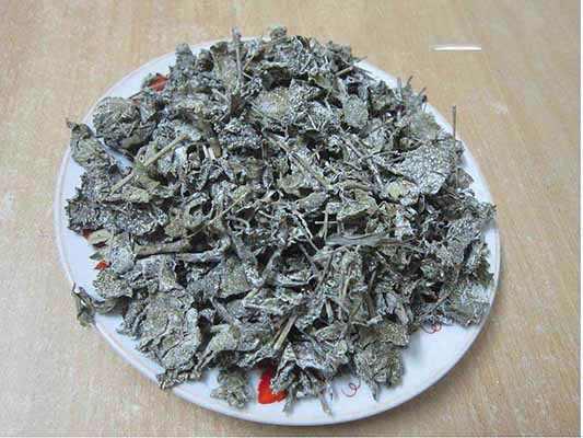 Ứng dụng của cây thảo dược chè dây tự nhiên chữa đau dạ dày tốt ở quận bình thạnh hcm